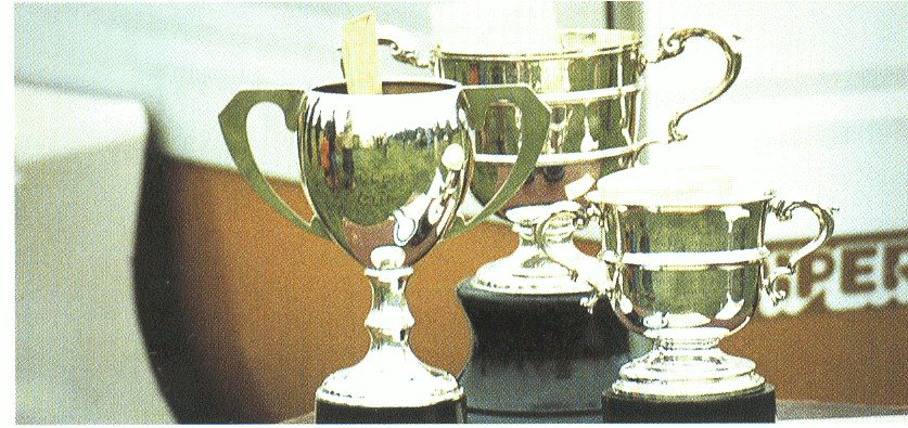 Sheepdog trials prizes