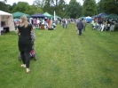 Bosworth Festival 2011